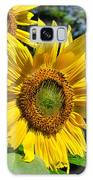 Spirals Of Sun Galaxy S8 Case