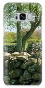 Stone Wall In Rhode Island Galaxy S8 Case