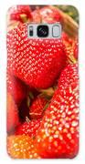 Strawberries In Natural Background Galaxy Case by Alex Grichenko