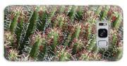 Succulent Series Vi Galaxy S8 Case