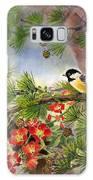 Summer Vine With Pine Tree Galaxy S8 Case