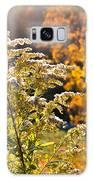 Sunlit Wildflower Galaxy S8 Case