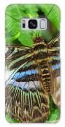Tattered Beauty Galaxy S8 Case