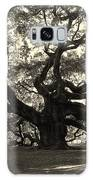 The Angel Oak Galaxy S8 Case
