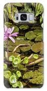 The Pond Galaxy S8 Case
