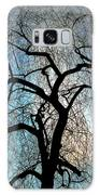 Those Gnarled Branches Galaxy S8 Case
