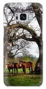 Three Under A Tree Galaxy S8 Case