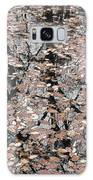 Trees In The Leaves Galaxy S8 Case