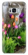 Tulips In Ruin Galaxy Case by Michael Hubley