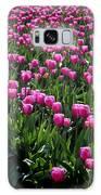 Purple Tulips Galaxy S8 Case