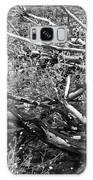 Under The Charred Laurel Sumac Galaxy S8 Case