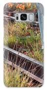 Urban Birches Galaxy S8 Case