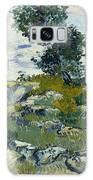 Vincent Van Gogh, The Rocks Galaxy S8 Case