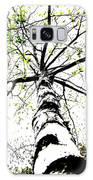 White Birch 2011-1b Galaxy S8 Case