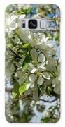 White Blossoms Galaxy S8 Case