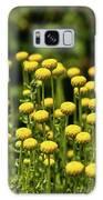 Yellow Tansy Galaxy S8 Case