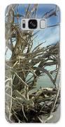 Sticks Galaxy Case by Robert Och
