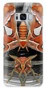 Atlas Moth8 Galaxy S8 Case