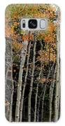 Autumn As The Seasons Change Galaxy S8 Case