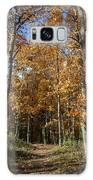 Autumn Pathway Galaxy Case by Dylan Punke