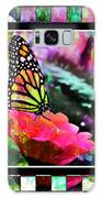 Butterflies Are Free Galaxy S8 Case
