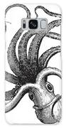 Common Octopus Octopus Vulgaris Galaxy S8 Case