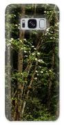 Dogwood Tree 2 Galaxy S8 Case