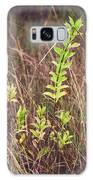 In Tall Grass Galaxy Case by Whitney Goodey