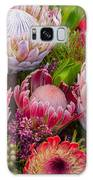 Protea Galaxy S8 Case