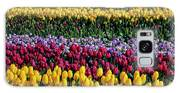 Spectacular Rows Of Colorful Tulips Galaxy S8 Case