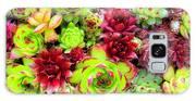 Succulent Garden Galaxy S8 Case