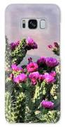 Walking Stick Cactus And Wren Galaxy S8 Case