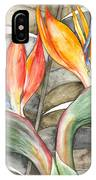 Bird Of Paradise 04 Elena Yakubovich IPhone Case