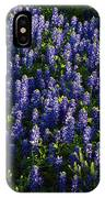 Bluebonnets In The Limelight IPhone Case
