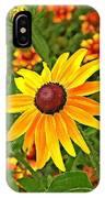 Coneflower And Gaillardia IPhone Case