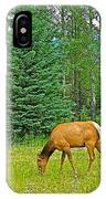 Elk Near Wapiti Campground In Jasper Np-alberta IPhone Case