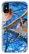 Finch And Blue Jay - California Winter Day IPhone Case