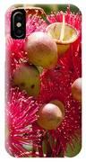 Flowering Gum W Ants IPhone Case