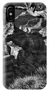 Grand Canyon Hermit View IPhone Case