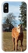 Horse Unbrideled IPhone Case