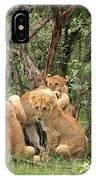 Masai Mara Lion Cubs IPhone Case