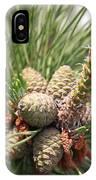 Pine Cones IPhone Case