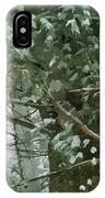 Tree Branch IPhone Case