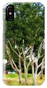 Trees In A Suburban Neighborhood In Summer IPhone Case
