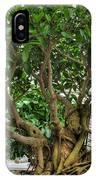 001 Bonsai Summer Show Buffalo Botanical Gardens Series IPhone Case