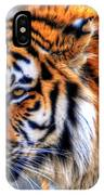 0011 Siberian Tiger IPhone Case