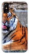 005 Siberian Tiger IPhone Case