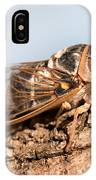 05 New Forest Cicada  IPhone Case