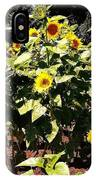 08252013038 IPhone Case