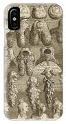 The Five Orders Of Periwigs IPhone Case